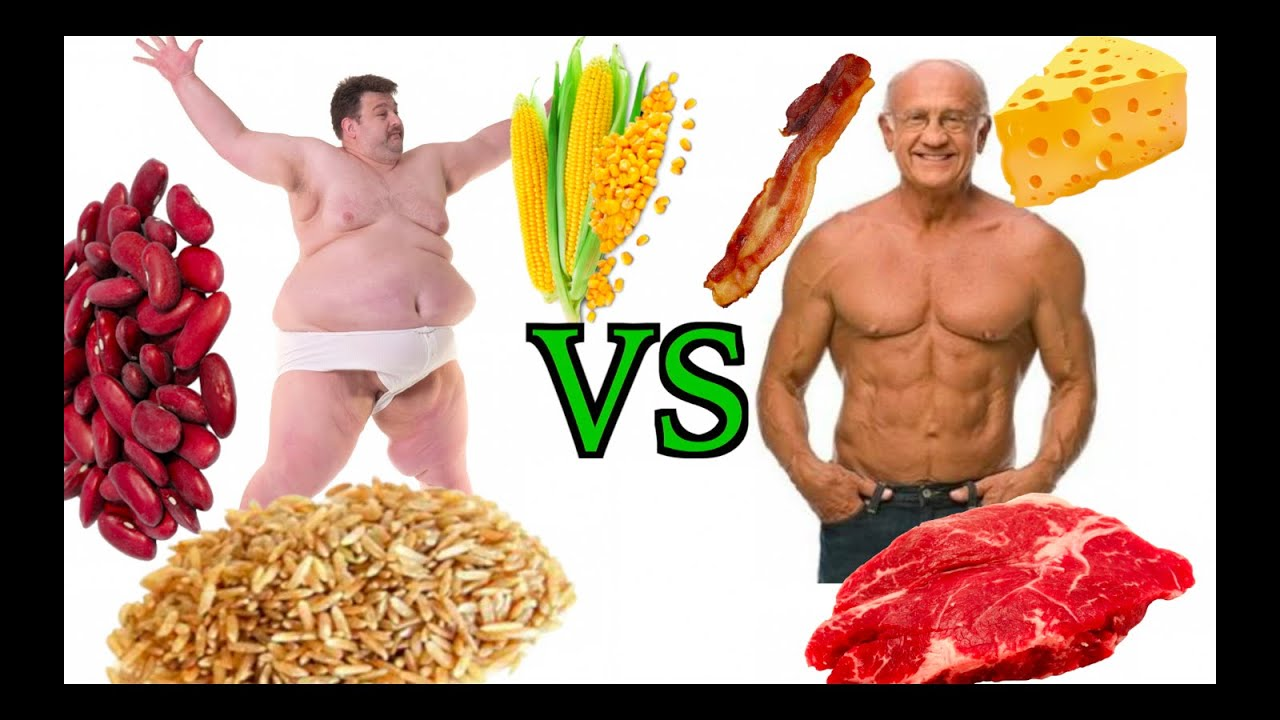 High Carb Vegan High Carb Vegan Vs Low Carb Paleo Diet Vegans Advisor
