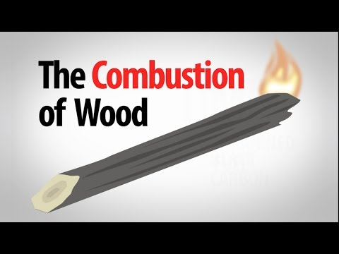 Science Spotlight: The Combustion of Wood