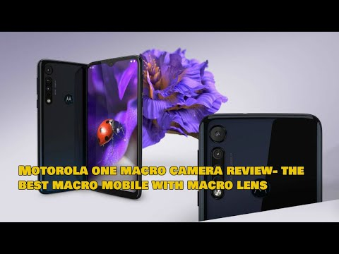 Motorola One Macro Camera Review. Is it Best Mobile For Macro Photography