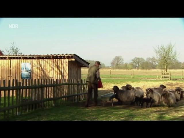 Der Bauer den die Störche lieben
