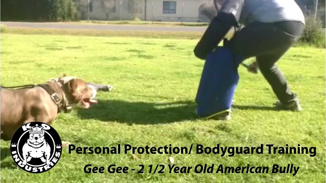 Personal Bodyguard Qualifications