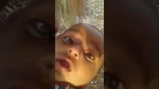 Download Video Sapi Menyusui Bayi Manusia MP3 3GP MP4