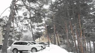 Flakes of snow, falling like stars (Yongpyong, South Korea)