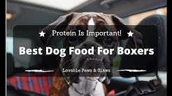 Best Dog Food For Boxers Review 2016