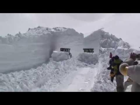 雪の大谷除雪作業