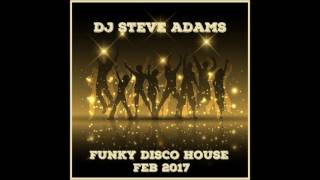 Funky Disco House Feb 2017