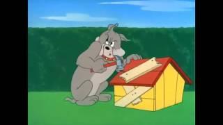 Топ 5 най-харесвани анимации от детството на 90-те