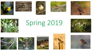 Spring 2018-2019 Nature Challenge
