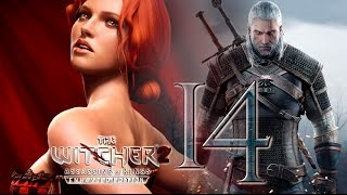 "The Witcher 2 ""Assassins Of Kings"" 
