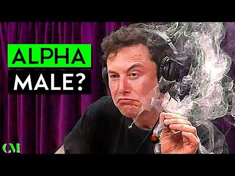 Elon Musk: SOCIAL SKILL & ALPHA Analysis | Scored 1 - 10