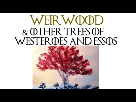 Weirwood and Other Trees of Westeroes and Essos | Game of Thrones Lore