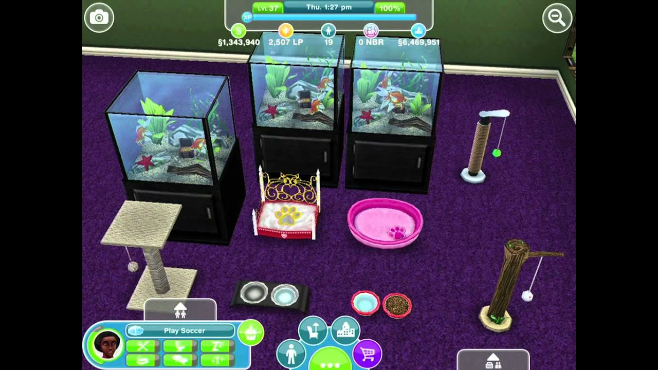 The Sims  Cats And Dogs How To Play Now