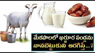 మేకపాలలో ఖర్జూర పండ్లను నానబెట్టుకుని ఆరగిస్తే | telugu Health Tips | health Tips  got milk