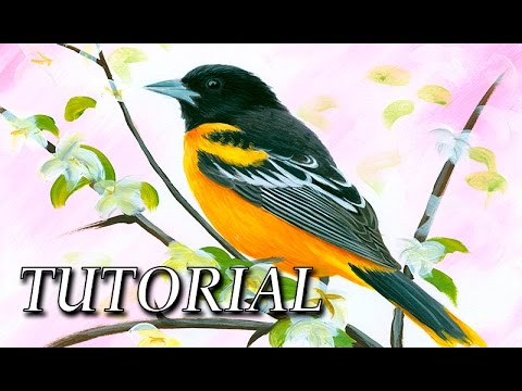 How to paint a realistic bird with Acrylic