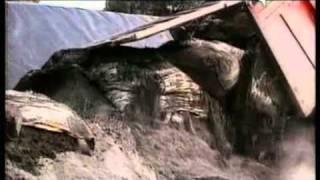 L'omicidio di Ilaria Alpi e Miran Hrovatin: i rifiuti in Somalia e l'insabbiamento in Italia