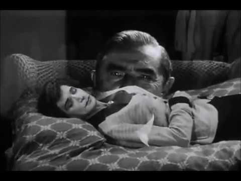 Glen or Glenda (Ed Wood - 1953)