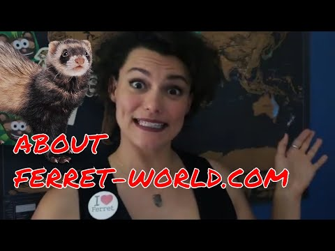 About Ferret-World.com