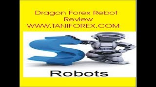 Dragon Expert Advisor Review Dragon Auto Trading Rebot Forex EA Information In Urdu Hindi Tani Forex