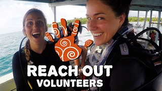 Cambodian Scuba Dive and Marine Conservation - Reach Out Volunteers