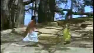 Download Pothi Vacha Malliga Mottu MP3 song and Music Video