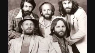 Beach Boys - Let The Wind Blow - Live,