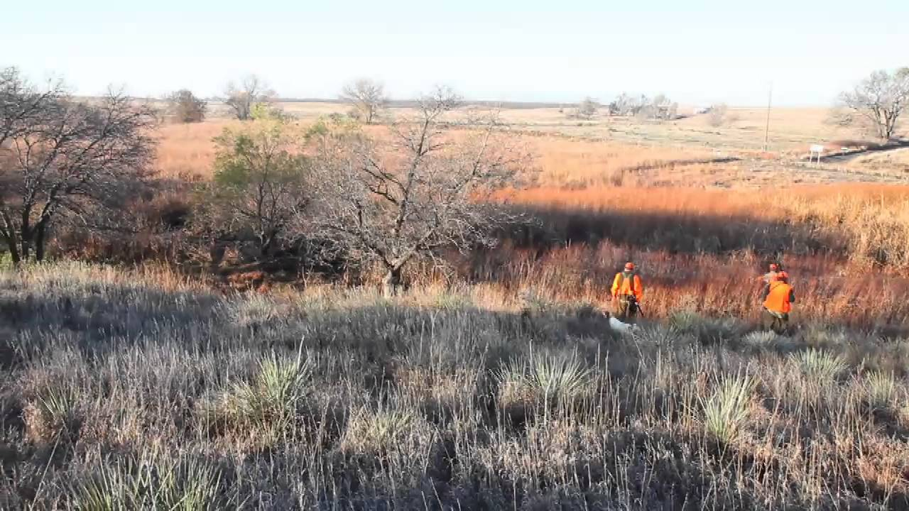 Kansas has thousands of Walk-in Hunting Areas on kansas hunting unit map, kansas walk-in fishing map, kansas hunting regions map,
