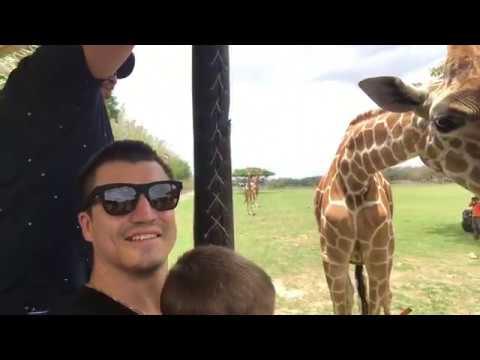 Зоопарк в Коста Рике !!! Safari Zoo in Costa Rica !!!