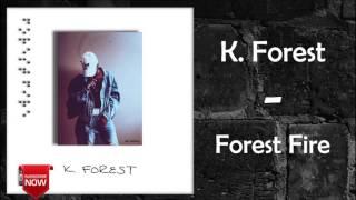 k forest trippin feat jaiden forest fire
