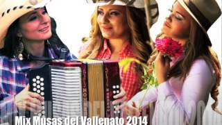 Musas del Vallenato Mix 2014