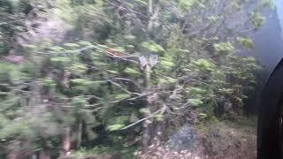 JR東日本C57「SLばんえつ物語号」会津若松行きが津川駅を発車(車内より)