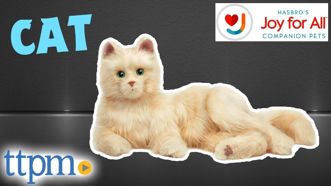 Joy For All Companion Pet Cat Review Hasbro Toys Games Youtube