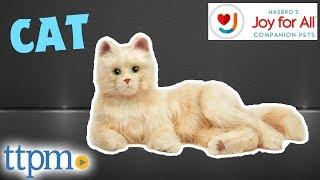 Joy for All Companion Pet Cat from Hasbro