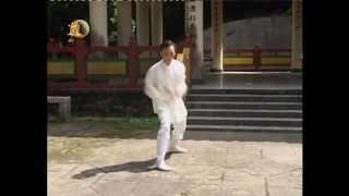 袁康就博士《養生修談》之武當太乙五行拳 2004 Taiyi Five Elements Fist by Dr. Yuen