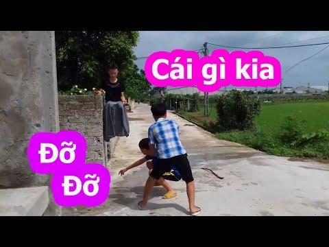 Trọc TV || Coi Cấm Cười Phiên Bản Việt Nam | TRY NOT TO LAUGH CHALLENGE 😂 Comedy Videos 2020