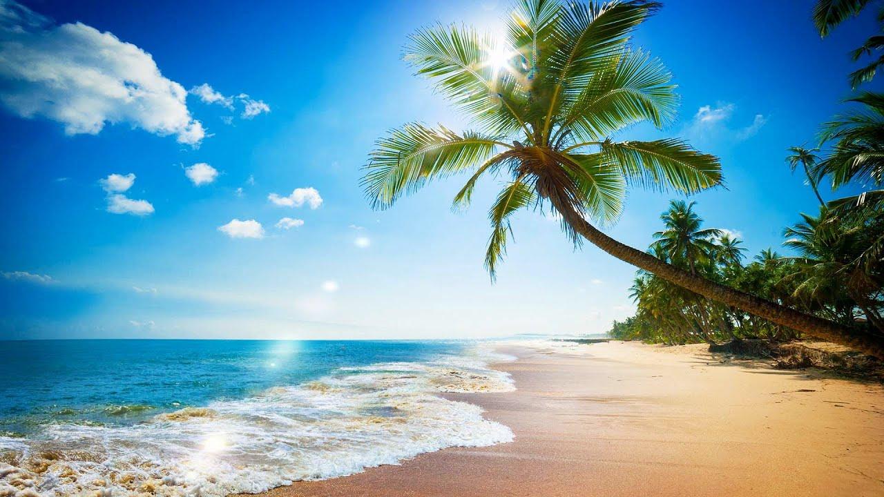 Tropical Island Beach Ambience Sound: Paradise Beach Ocean Waves Sound