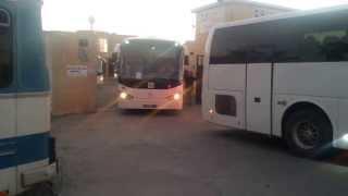 GD Bus GmbH - 10 Busse in Monastir / Tunesien