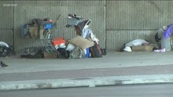 City of Austin continues underpass cleanups despite new homeless ordinances   KVUE