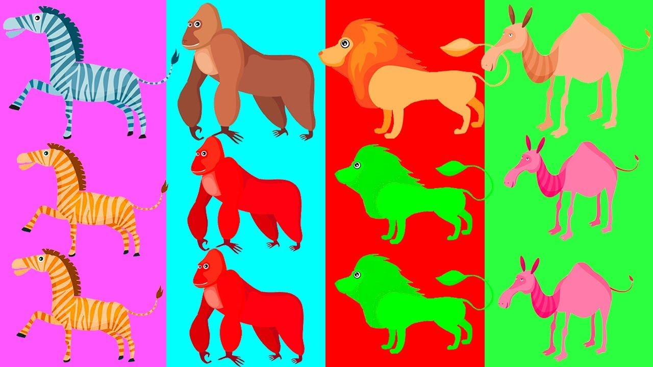 Aprendiendo Nombres de Animales y Colores - Baby Cubs - Video en Español para niños