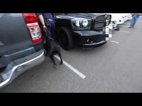 Police raids across Canberra