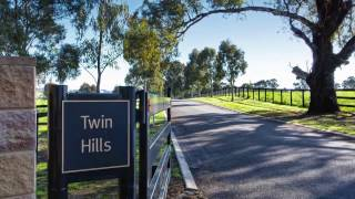 About Twin Hills Stud