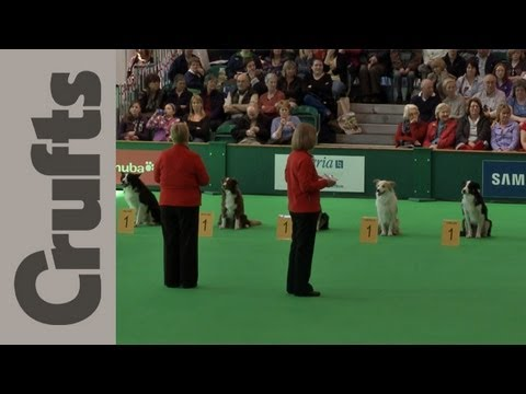 World Cup Obedience Part 10 (Stays) - Crufts 2012