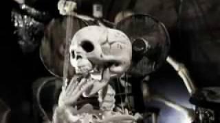 Tümpelzombies - Live in der Haifischbar - Zugabe