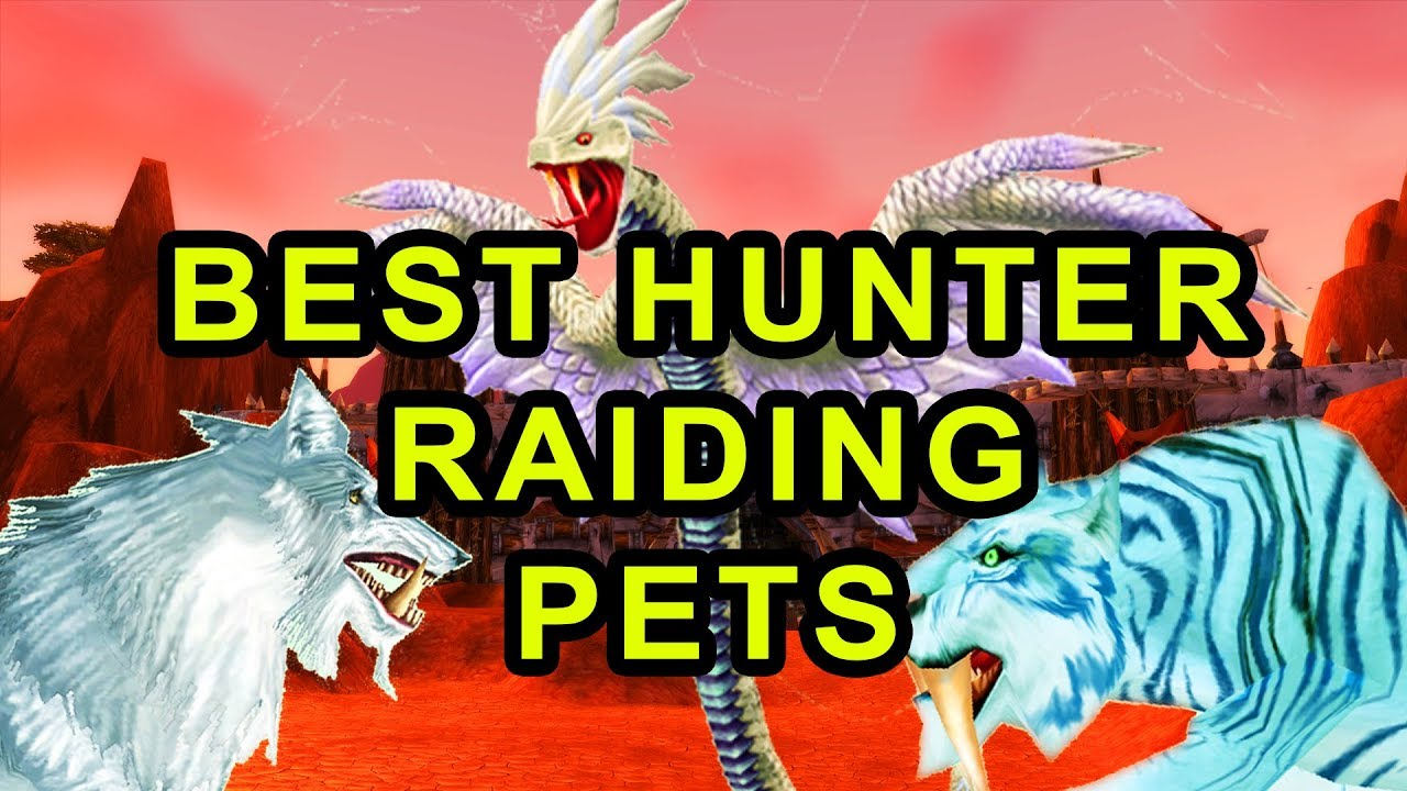 Classic Wow Best Hunter Raiding Pets Detailed Guide Youtube
