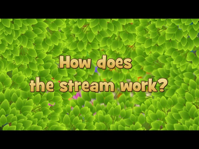 How does the Stream work?