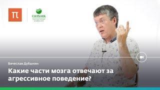 Мозг и агрессия — Вячеслав Дубынин