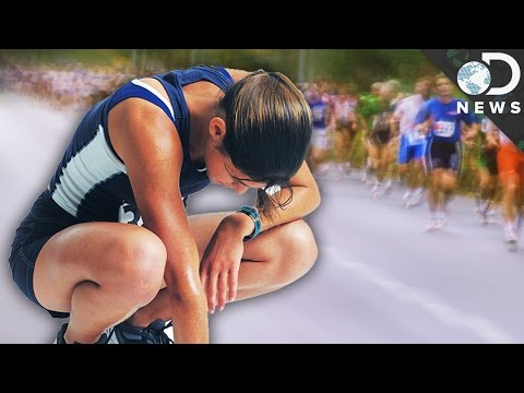 What Does Running A Marathon Do To Your Body?