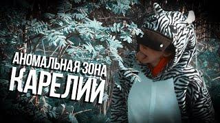 видео Год экологии в России: в фокусе отходы