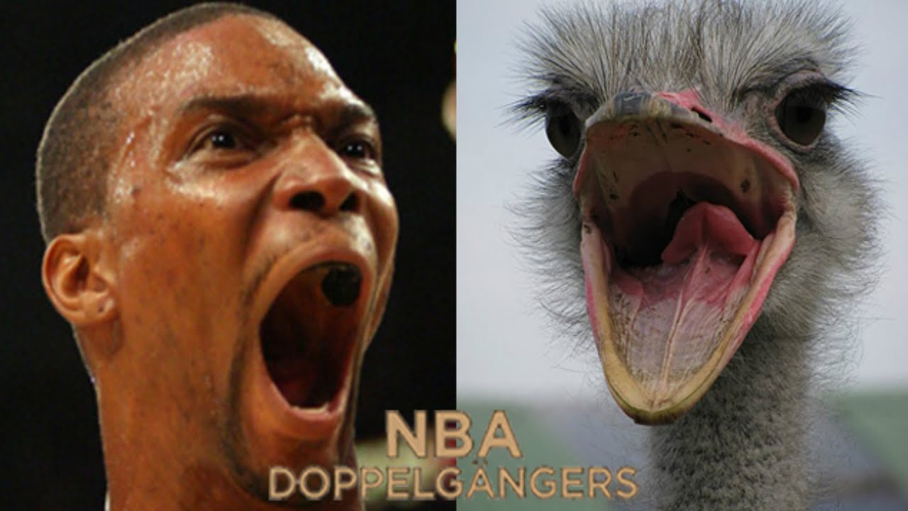The Human Ostrich Chris Bosh Nba 2k16 jumpshot fix