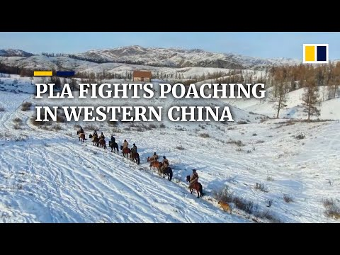 Chinese border guards patrol for animal poachers in mountainous regions of Xinjiang
