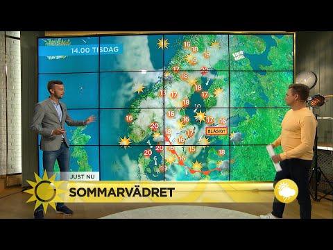 Här är de svenska städerna som toppar soltopplistan! - Nyhetsmorgon (TV4)
